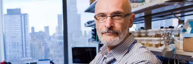 Alexander Rudensky Ph.D.