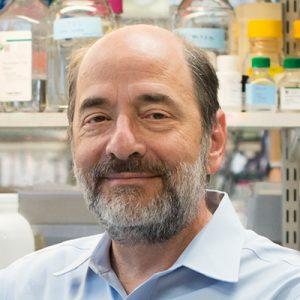 Michael Greenberg, Ph.D.