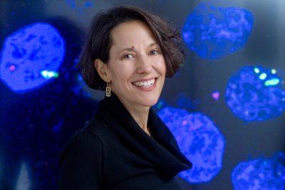 Brenda Shulman, PhD