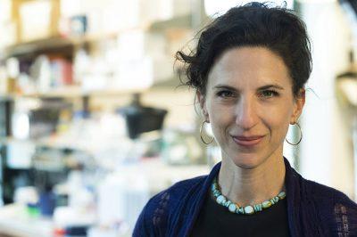 Vanessa Ruta, Ph.D.