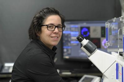 Anna-Katerina Hadjantonakis, Ph.D.