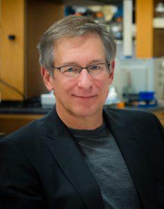 Steller, Ph.D.