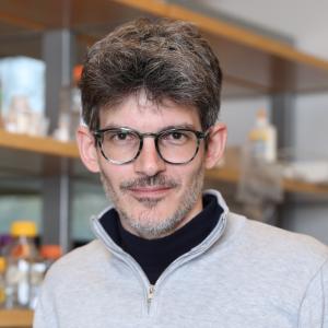 Luciano Marraffini, Ph.D.